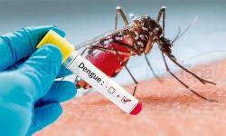 Ministério da Saúde antecipa campanha de combate ao Aedes aegypti