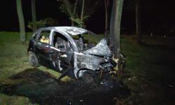 Carro que atingiu e matou ciclista em avenida de Dourados pega fogo após bater contra árvore