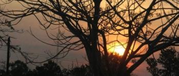 Inverno promete pouca chuva, temperaturas acima da média e eventos de geada em MS