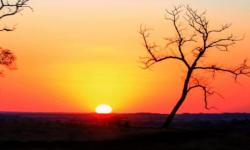Inverno se despede com temperaturas acima dos 40°C e umidade do ar em níveis críticos em MS