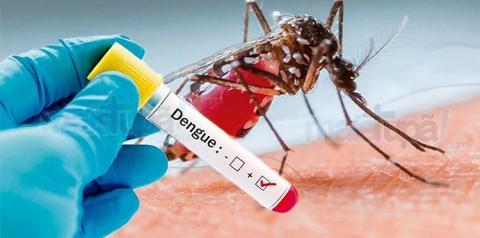 Saúde confirma mais duas mortes por dengue em Dourados