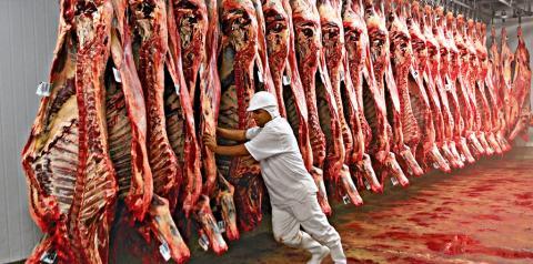 Cotação do boi sobe 12,1% no Estado com maior demanda chinesa