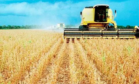 Incertezas no cenário econômico derrubam preço da soja em MS