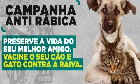 Campanha de vacinação antirrábica na área urbana de Fátima do Sul terá início neste sábado, dia 10