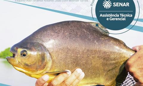 Sindicato Rural promove 1ª Feira do Peixe dos Piscicultores de Fátima do Sul