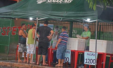 Feira do Peixe e Vitrine em Piscicultura em Fátima do Sul destacaram importância da cadeia produtiva