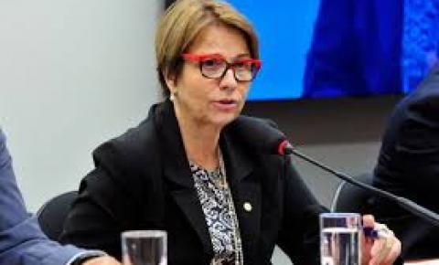 Ala do DEM quer que ministra da Agricultura Tereza Cristina deixe o governo após saída de Moro