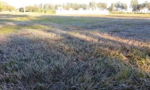 Madrugada tem geada na fronteira e mínima de 3 graus na região de Dourados