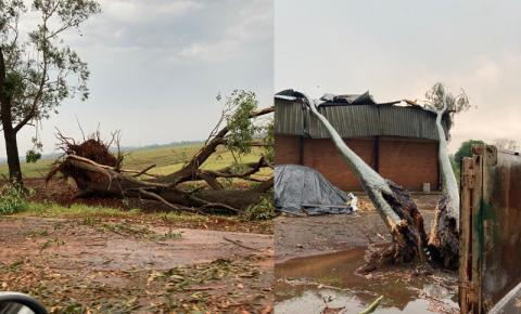 Tempestade com granizo surpreende e deixa rastro de destruição em Caarapó