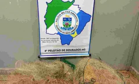 Morador em Fátima do Sul é preso em flagrante armando redes de pesca na Ilha do Sol
