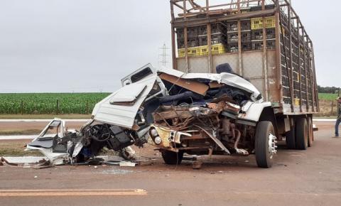 Motorista perde o freio e caminhão carregado com frangos colide contra carreta na BR-060 em Sidrolândia