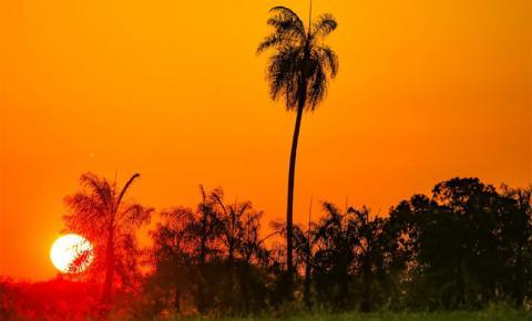 Sol forte e tempo seco continua sendo destaque nesta terça-feira em MS