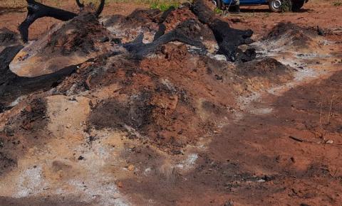 Proprietário rural é multado em R$ 9 mil por incêndio em pastagem