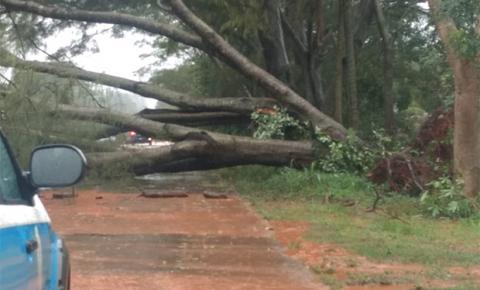 'Situação nunca registrada': temporal com ventos de 100 km/h fez estragos em Mato Grosso do Sul